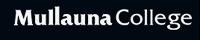 Swan Air Cooling - Mulluana College